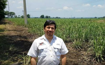 Central American region improving cane quality with JEFFCO Technology